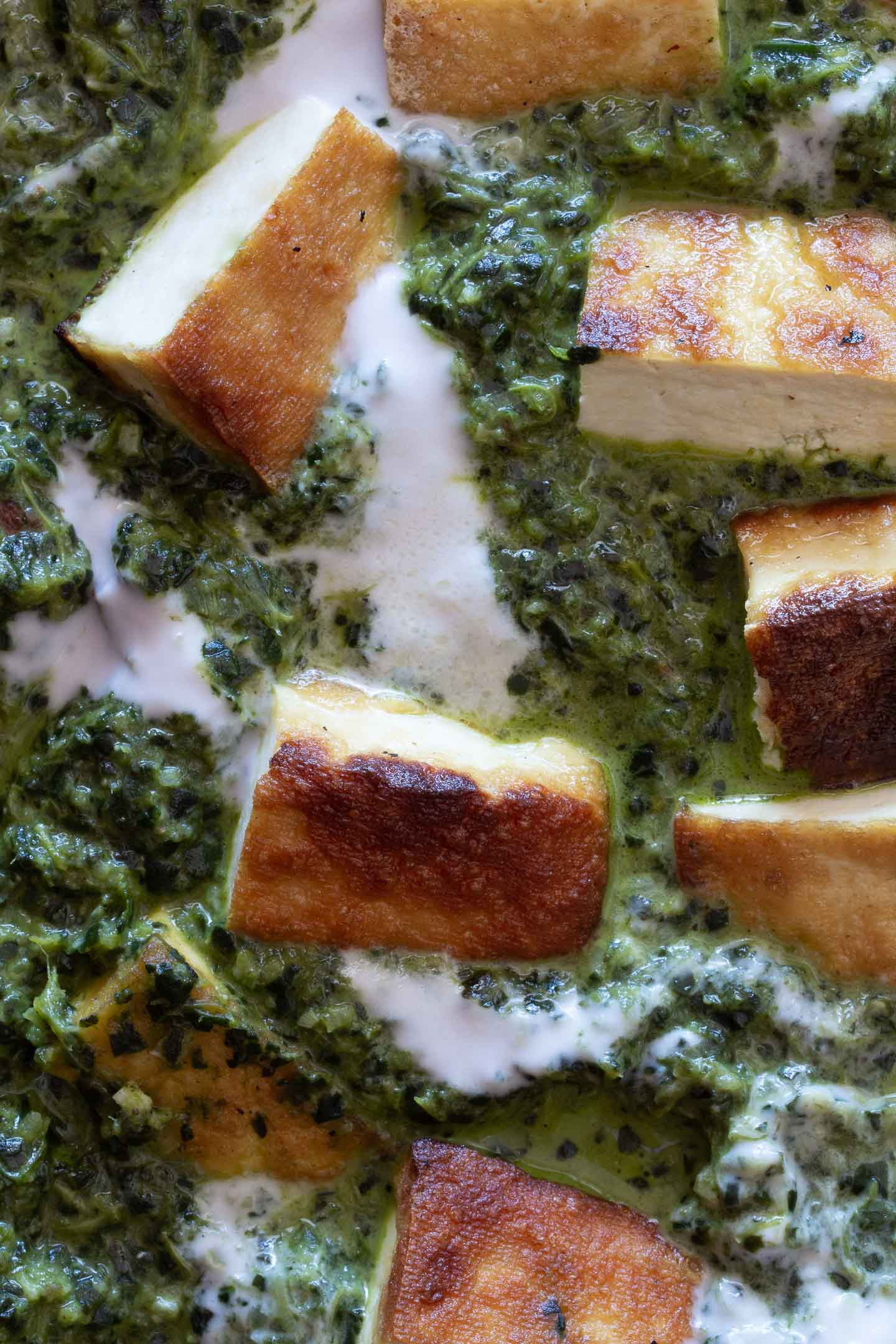 Close up photo of dairy free Palak Paneer with spinach sauce, tofu and coconut cream