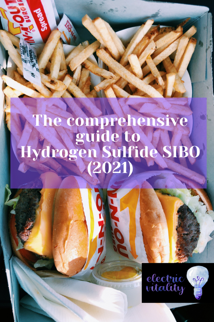 Burger and fries with text overlay: The Comprehensive Guide to Hydrogen Sulfide SIBO (2021)